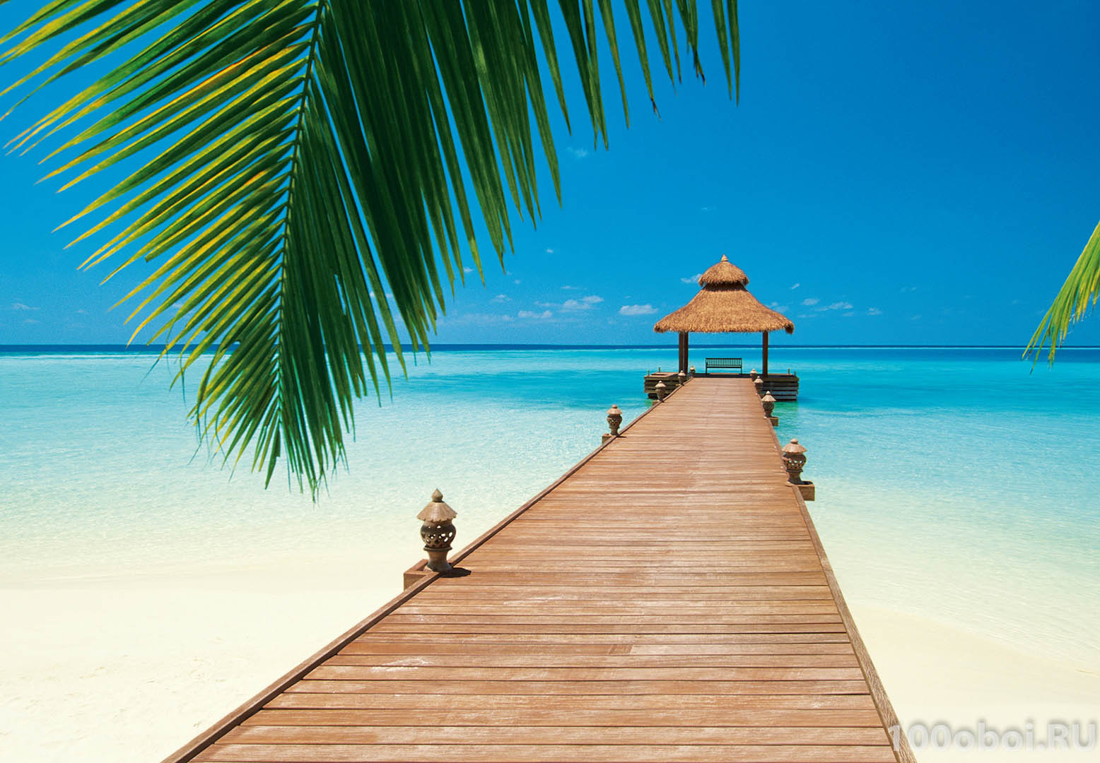 ... на стену «Райский пляж» WG 00284 Paradise Beach: http://www.100oboi.ru/catalog/fotooboi/fotooboi_wall/paradise_beach_00284_366_x_254_cm/